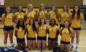 2015 Volleyball team pic smallerrr